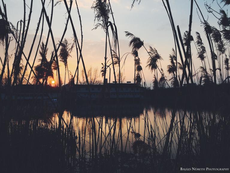 pesterzsébet duna part naplementében